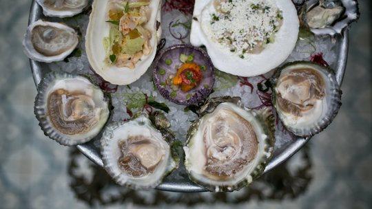 oysters-popularity-videoSixteenByNine540.jpg