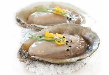 Kiwa Oyster